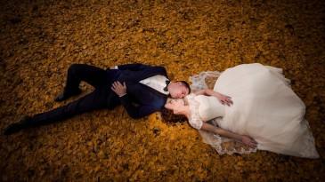 Fotograf nunta bacau (13)